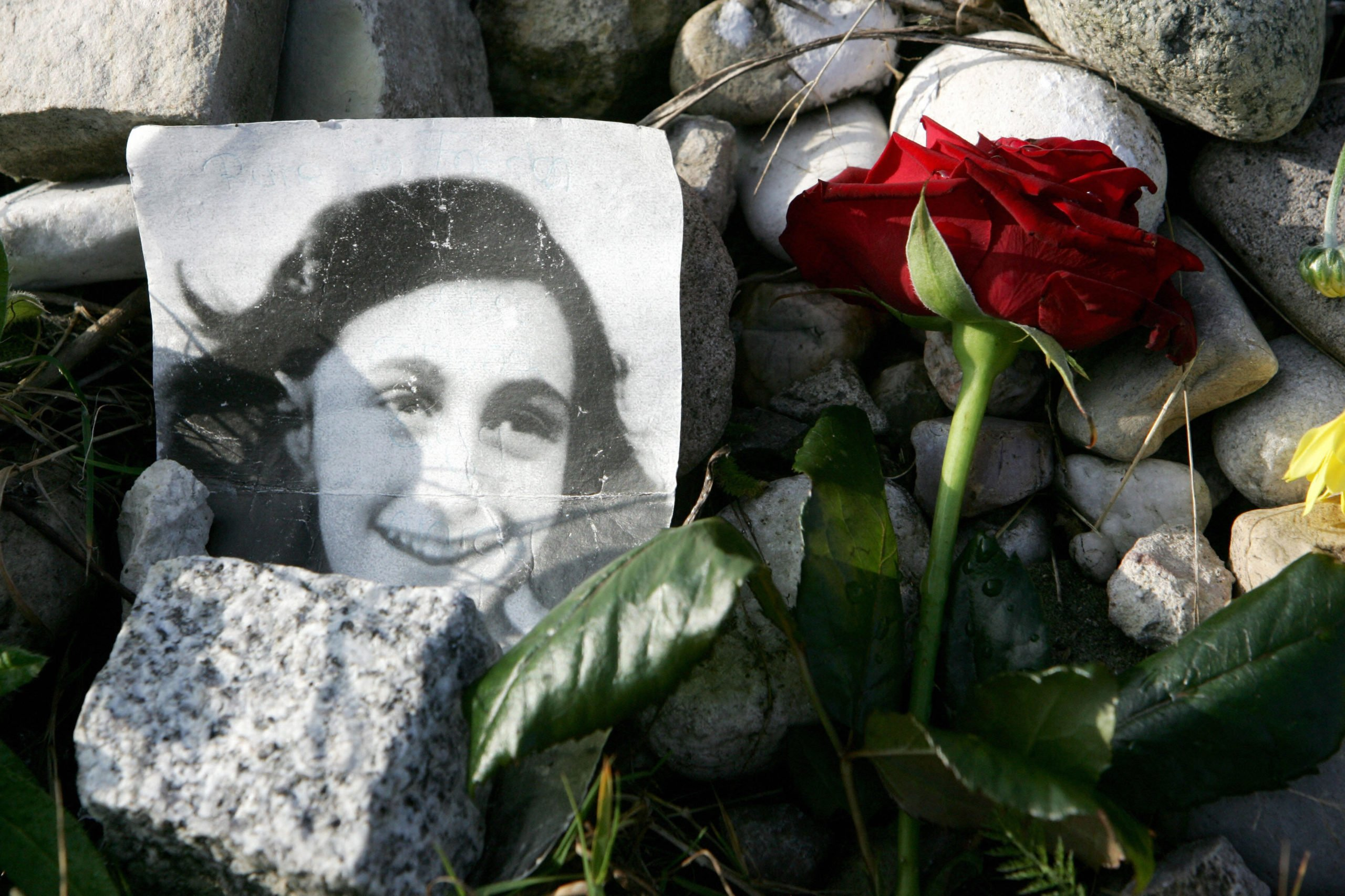"""A picture of Anne Frank lies in front of the memorial stone for Jewish girl Anne Frank, author of """"The Diary of a Young Girl"""", and her sister Margot, 28 October 2007 on the grounds of the new Bergen-Belsen Memorial. Both girls died at the concentration camp a few weeks before it was liberated by British troops in April 1945. (NIGEL TREBLIN/DDP/AFP via Getty Images)"""